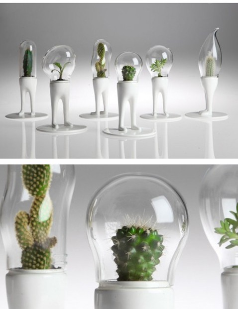 microplante.jpg